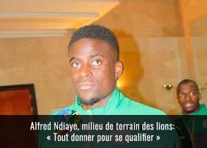 alffred-ndiaye-interview1